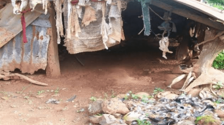 Enugu Community Where Women Are Made Shrine Property Forcefully Married To Old Men