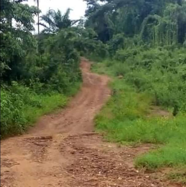 Ministry pays company N81.4 million for non-existed Kogi community road